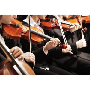 Euphoric Strings